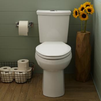 Pleasing H2Option Siphonic Elongated Toilet Beatyapartments Chair Design Images Beatyapartmentscom